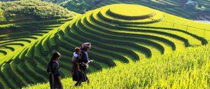 8 địa điểm du lịch Sapa bạn nên đến một lần trong đời