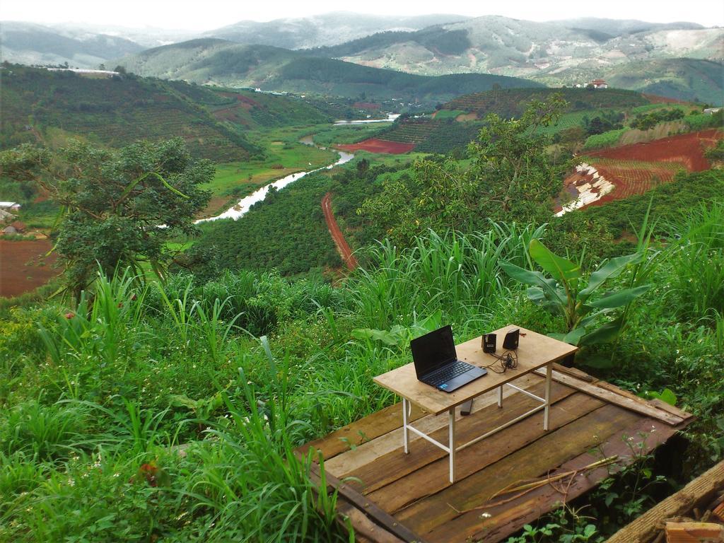 Midori Coffee Farm