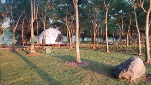 Công viên Hồ Thiên Nga – điểm thu hút mới tại Việt Nam