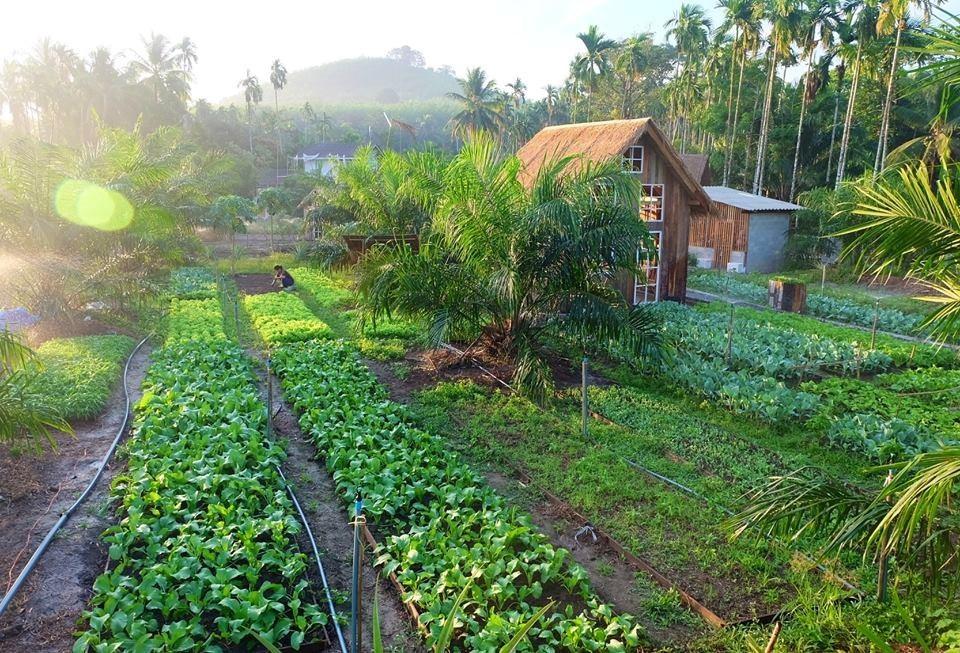Ohara Farmstay