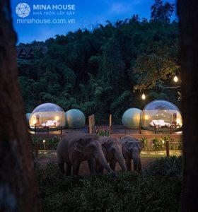 Thái Lan có khu nghỉ dưỡng nhà bong bóng 570 USD một đêm
