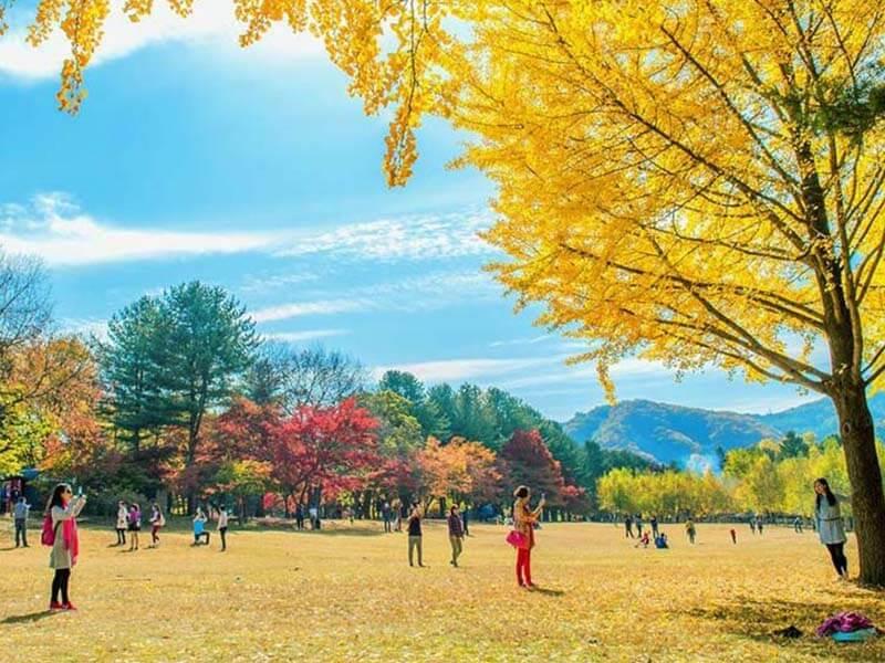 Mùa thu ở đâu đẹp nhất – Du lich vào mùa thu ở đâu đẹp